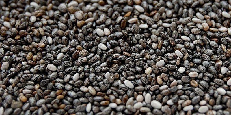 Grosshandel Samen und Getreide Chia